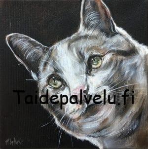 Päivi Latvala Cat