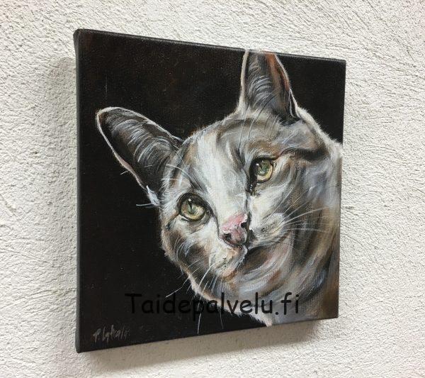 Päivi Latvala Cat 1
